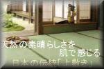 上敷き・ポロプロピレン敷物